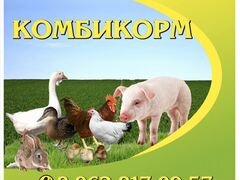 Корма для животных