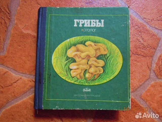 грибы каталог с фото