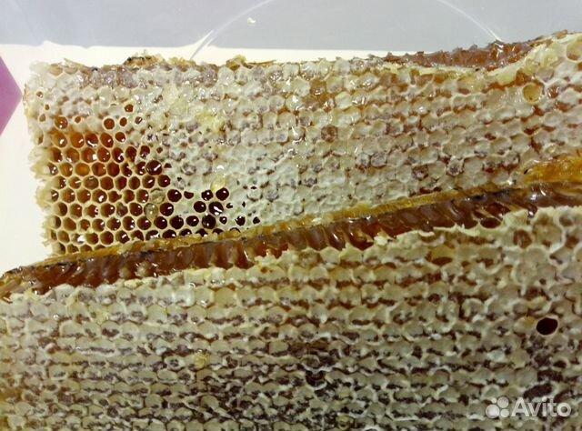 Соты медовые  89237901300 купить 2