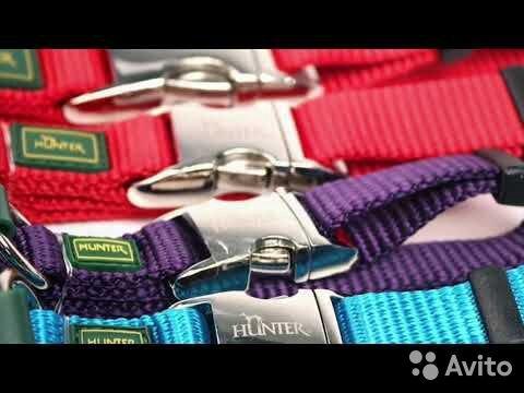 Hunter ошейник для собак ALU-Strong 89276631870 купить 1